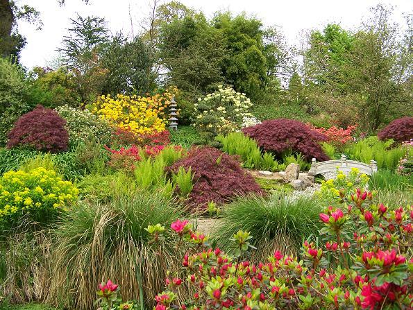 jardin-surcharge