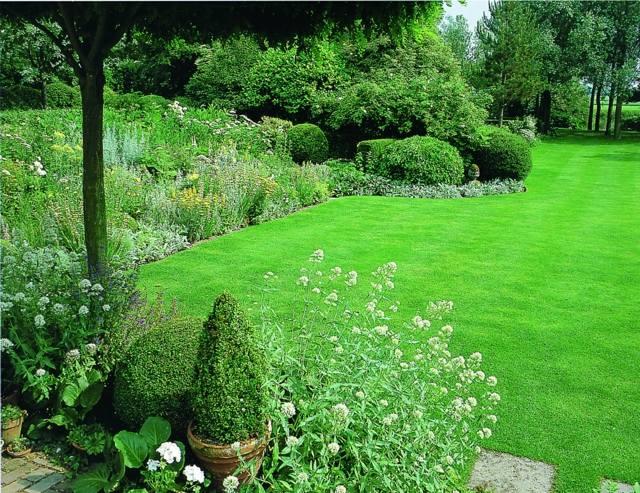 pelouse-jardin
