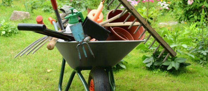 Sem jardin conseils et astuces pour avoir le plus beau jardin du voisinage - Comment avoir un beau jardin ...